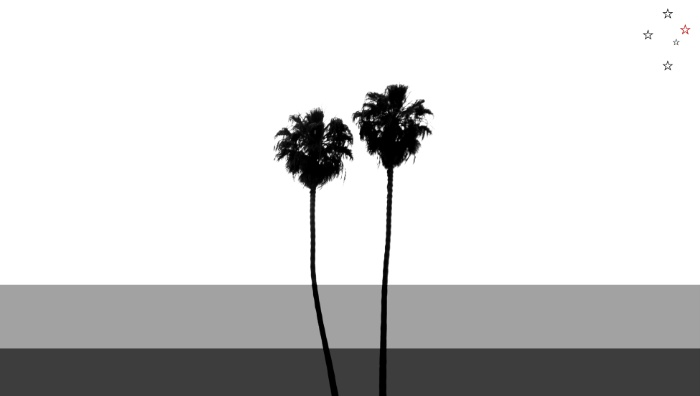 Classic Palm Trees